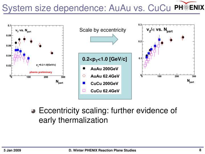 System size dependence: AuAu vs. CuCu