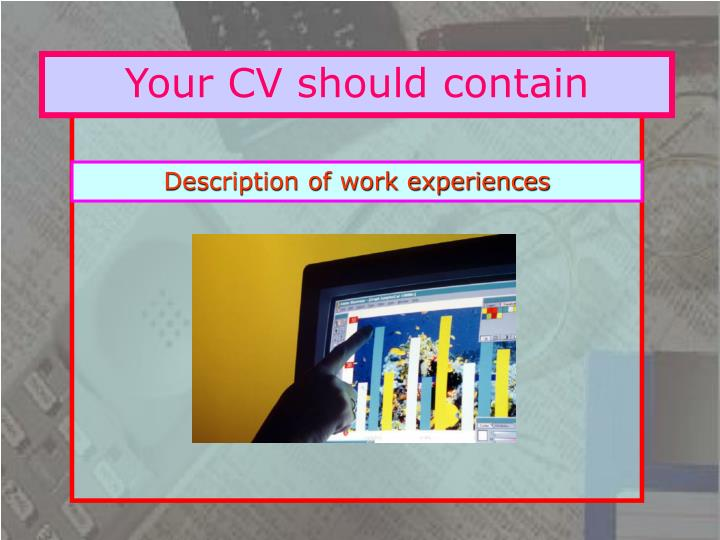 Your CV should contain