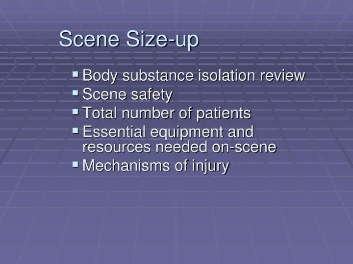 Scene Size-up
