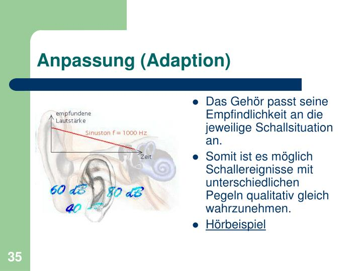 Anpassung (Adaption)