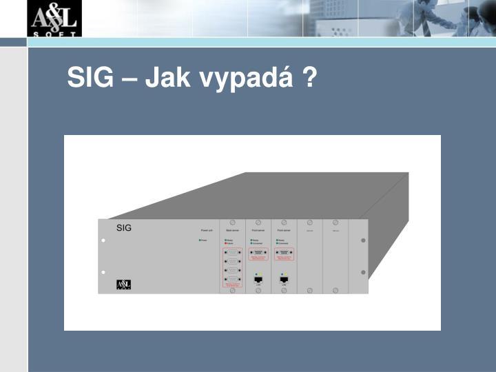 SIG – Jak vypadá ?