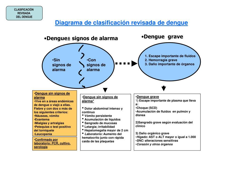 PPT - Diagrama de clasificación revisada de dengue PowerPoint ...