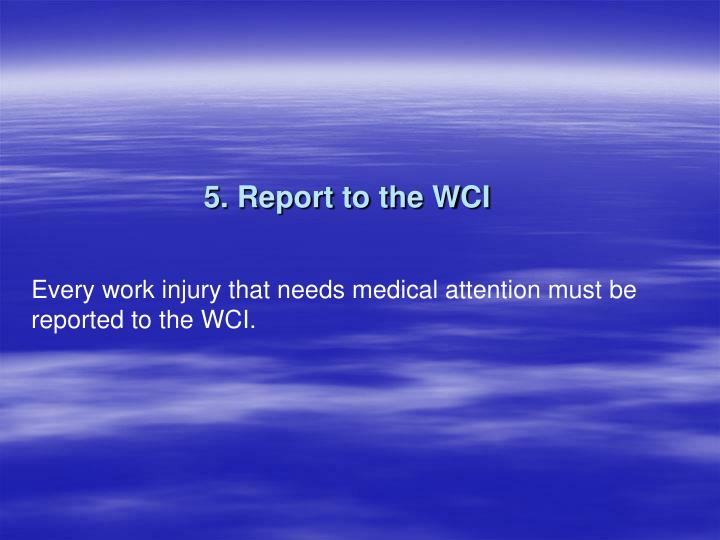5. Report to the WCI