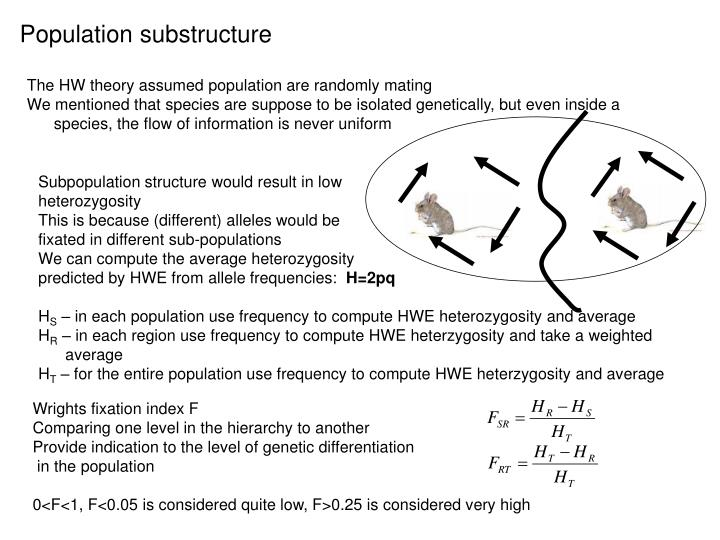 Population substructure