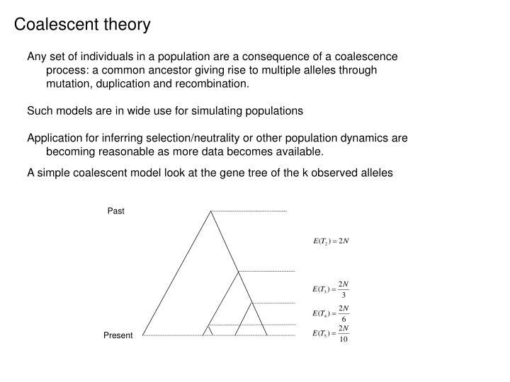 Coalescent theory