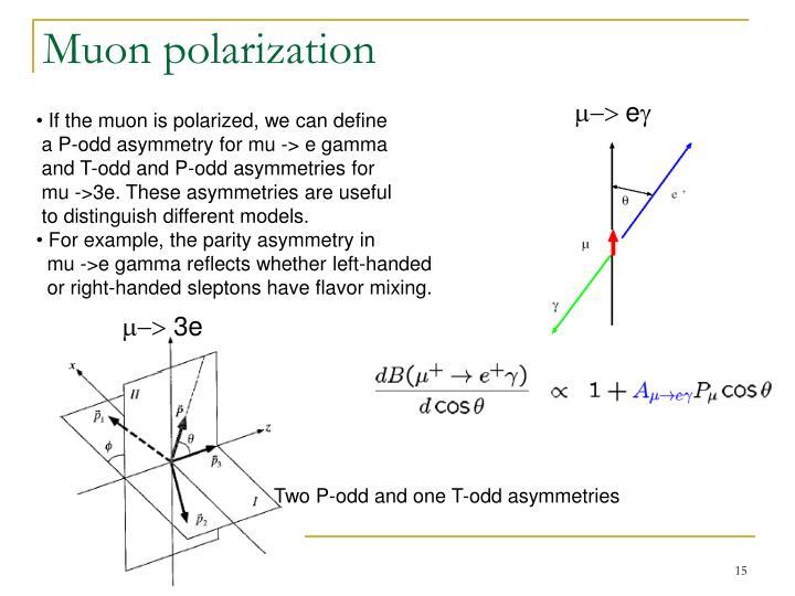 Muon polarization
