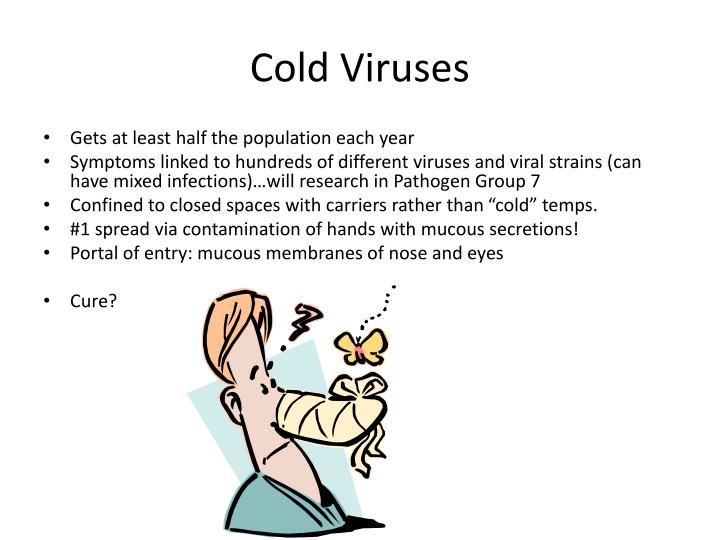 Cold Viruses