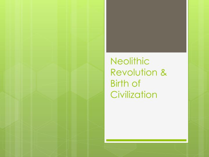 Neolithic revolution birth of civilization