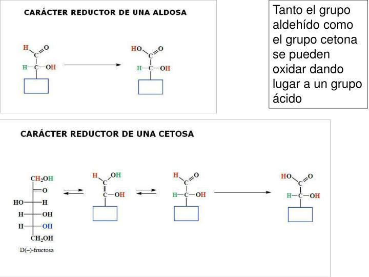 Tanto el grupo aldehído como el grupo cetona se pueden oxidar dando lugar a un grupo ácido