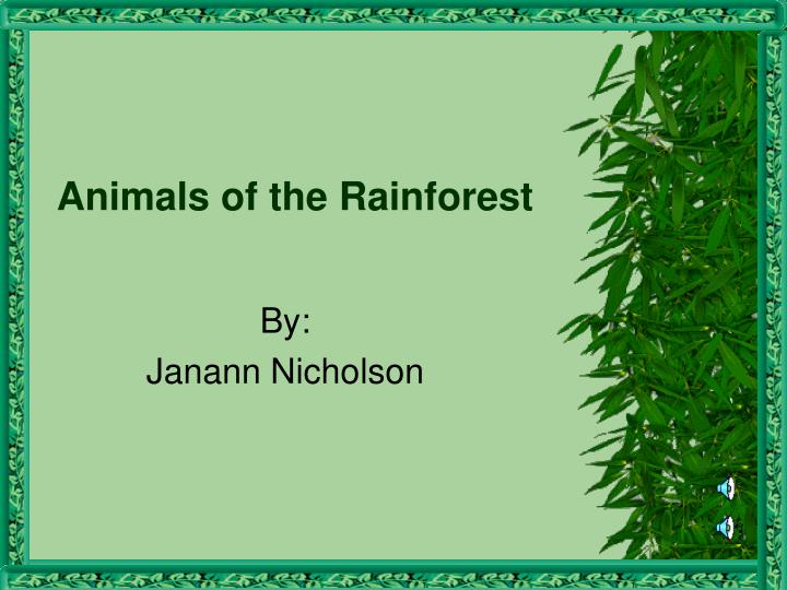 ppt animals of the rainforest powerpoint presentation id 5517652