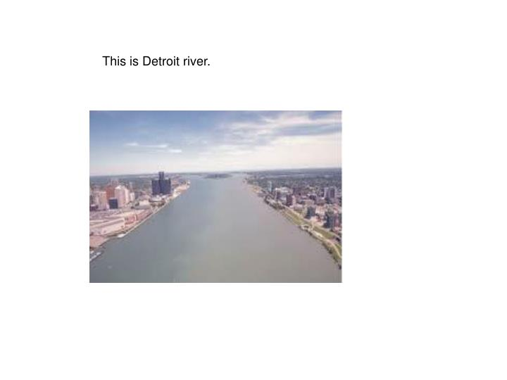 This is Detroit river.