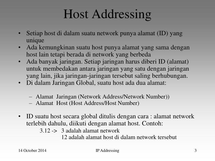 Host addressing1