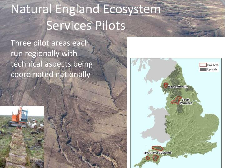 Natural England Ecosystem Services Pilots