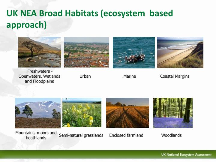 UK NEA Broad Habitats (ecosystem  based approach)