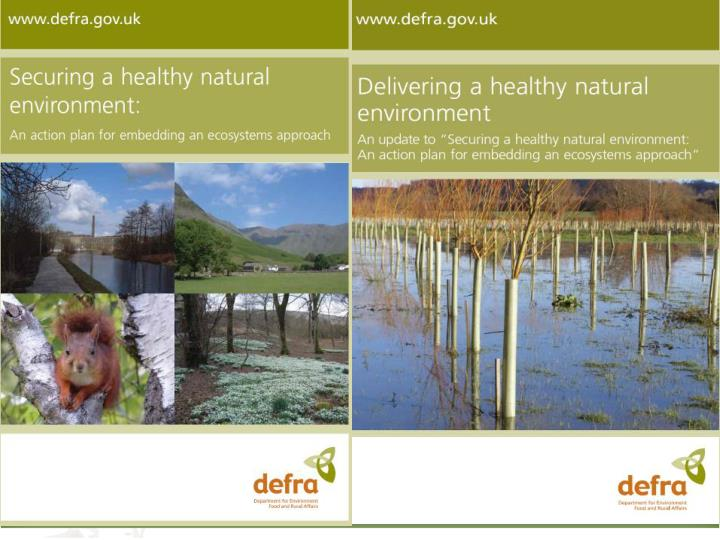 The natural environment white paper 2011