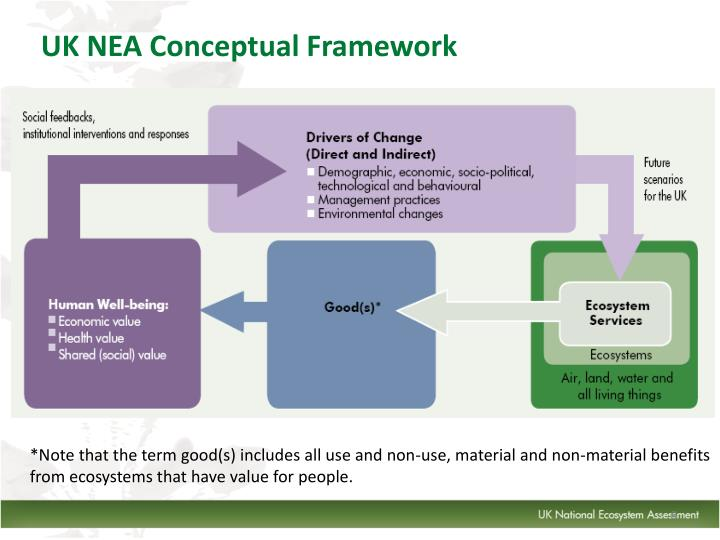 UK NEA Conceptual Framework