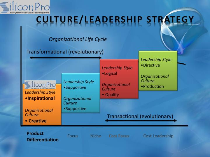 Culture/Leadership Strategy