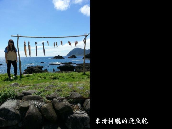 東清村曬的飛魚乾