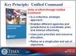 key principle unified command