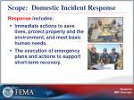 scope domestic incident response