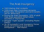 the arab insurgency