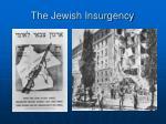 the jewish insurgency1