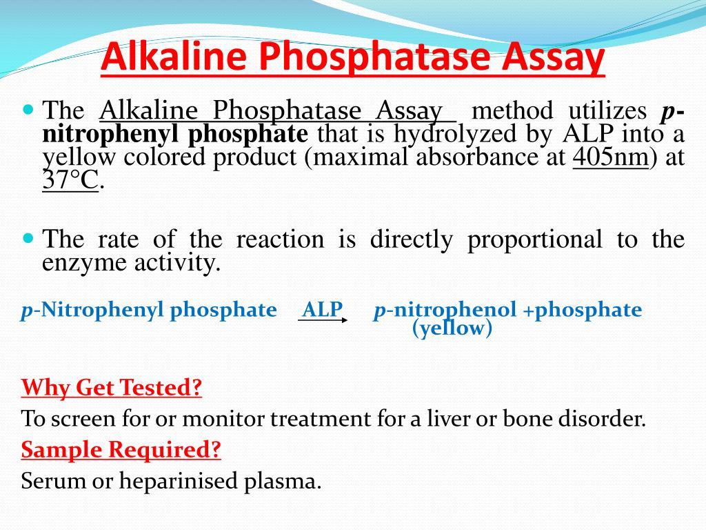 Enzyme activities of alkaline phosphatase (ALP) in serum