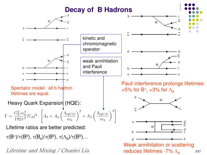 Decay of  B Hadrons
