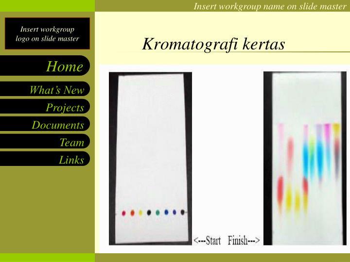 Kromatografi kertas