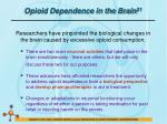 opioid dependence in the brain 31