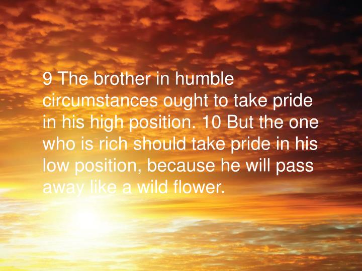 9 The brother in humble circumstances ought to take pride in his high position. 10 But the one who is rich should take pride in his low position, because he will pass away like a wild flower.