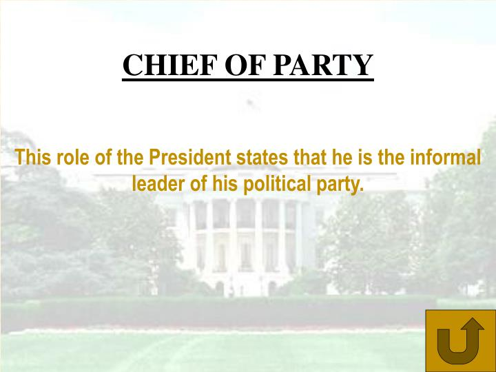 CHIEF OF PARTY