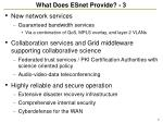 what does esnet provide 3