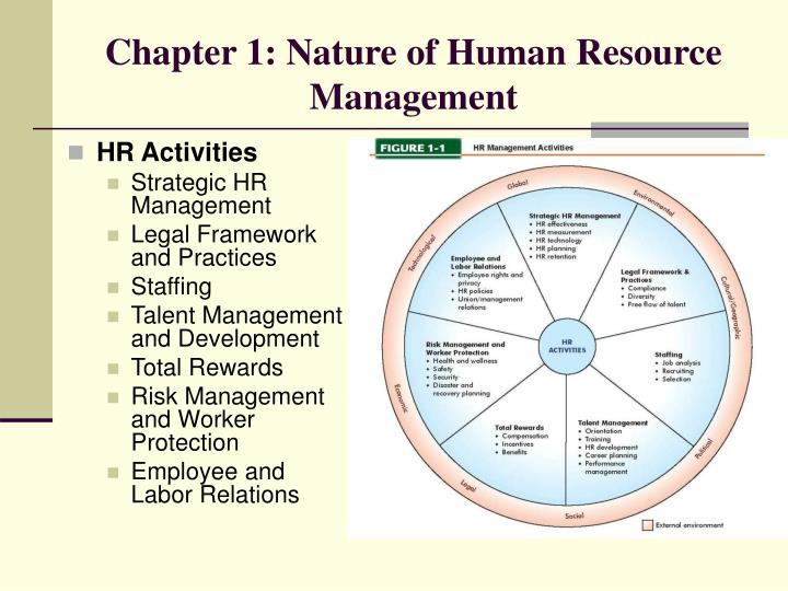 hr management activities