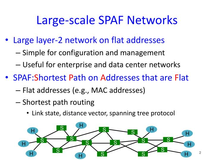 Large scale spaf networks