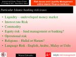 particular islamic banking risk issues