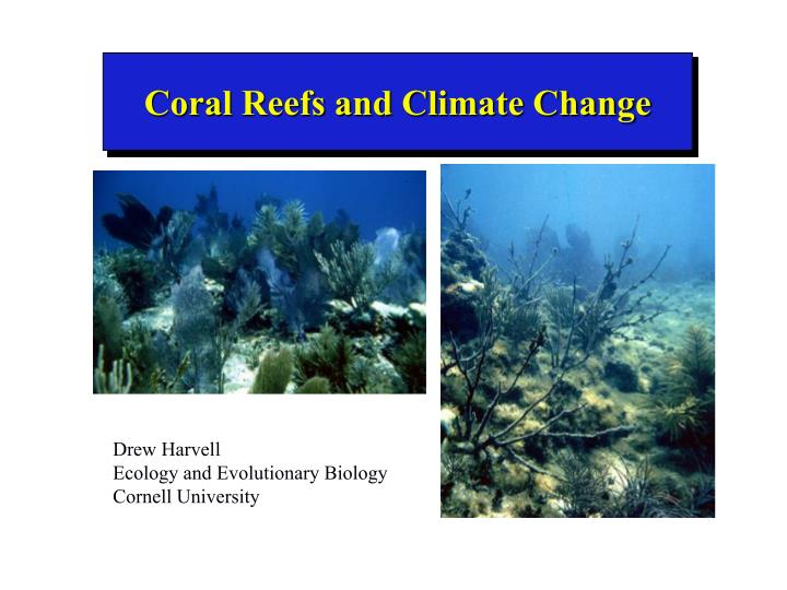 coral reefs and climate change n.