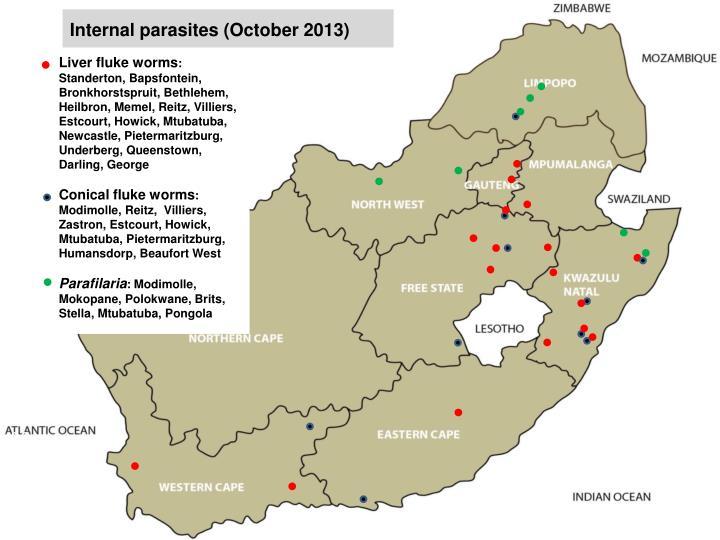 Internal parasites (October 2013)