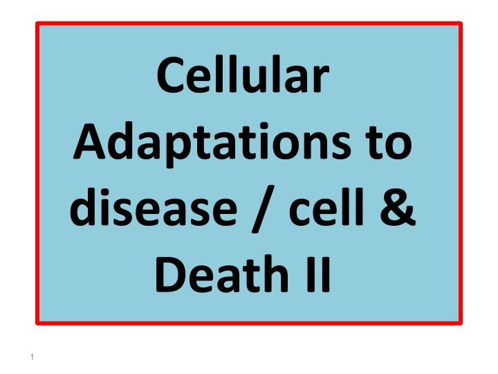 cellular adaptations to disease cell death ii n.