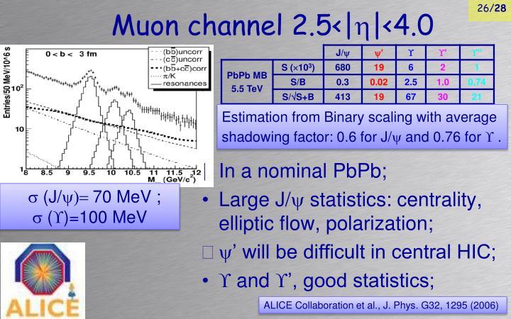 Muon channel 2.5< 