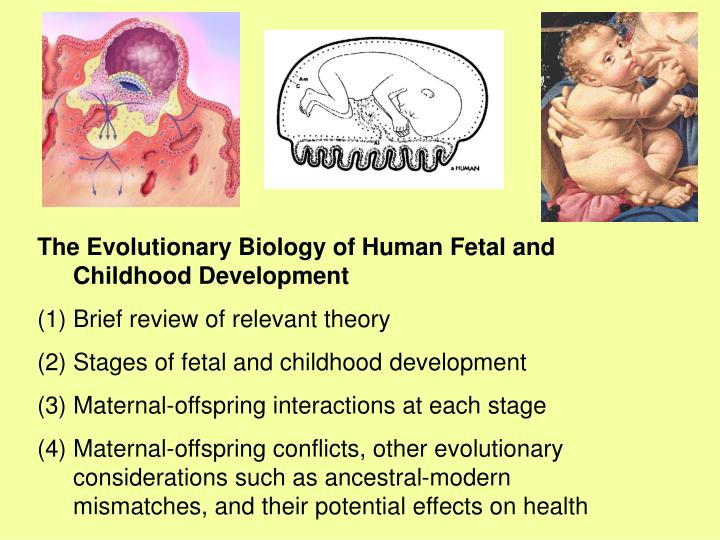 presentation of the evolutionary stages of • evolutionary purpose teal organizations base their strategies on what they sense the world is asking from them agile practices that sense and respond replace the machinery of plans, budgets, targets, and incentives.