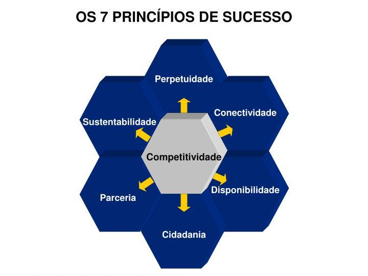 OS 7 PRINCÍPIOS DE SUCESSO