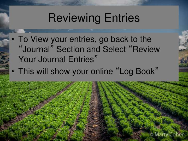 Reviewing Entries