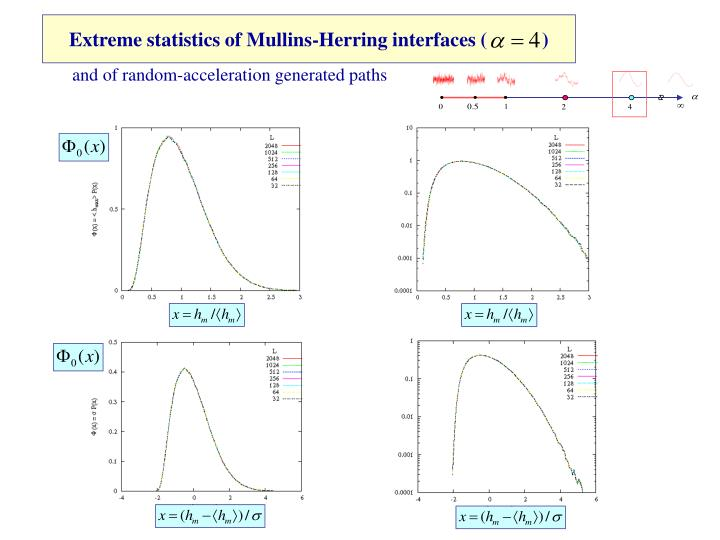 Extreme statistics of Mullins-Herring interfaces (           )