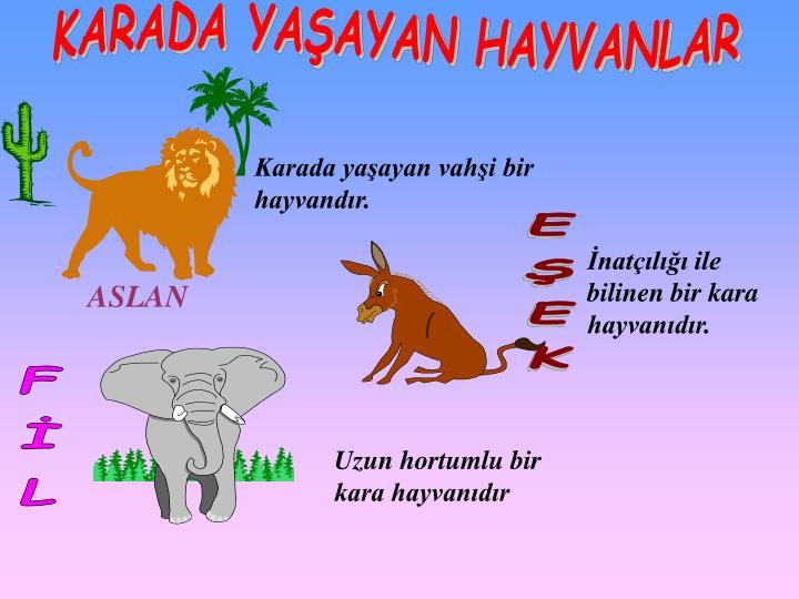 Havda Karada Suda Yasayan Hayvanlar Okuloncesi T