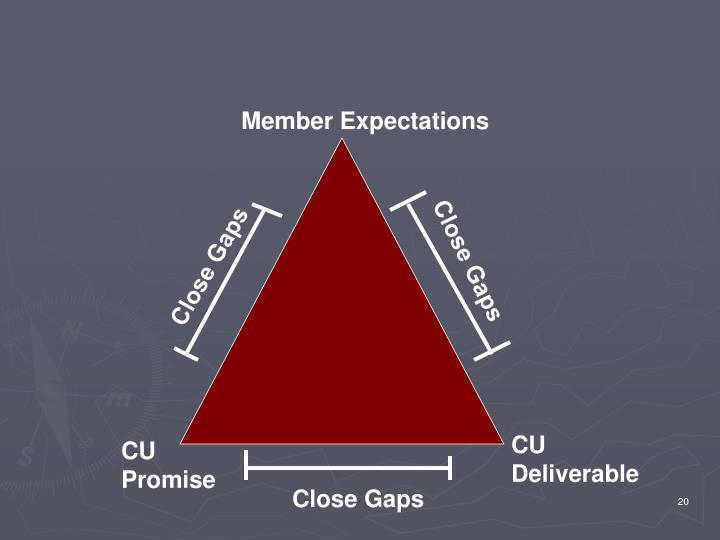 Member Expectations