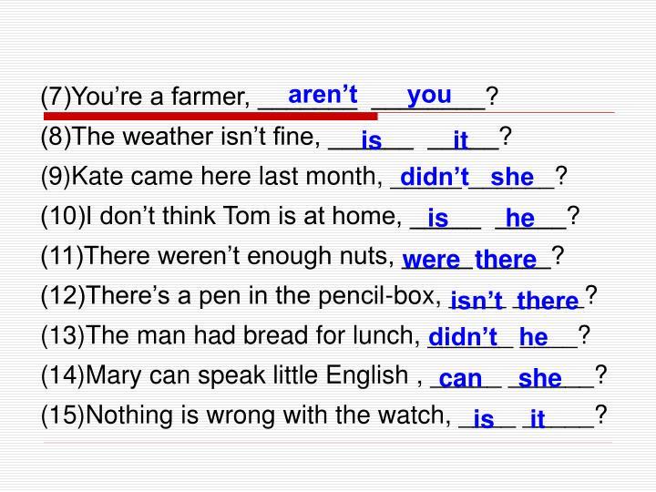 (7)You're a farmer, _______  ________?