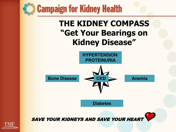 THE KIDNEY COMPASS