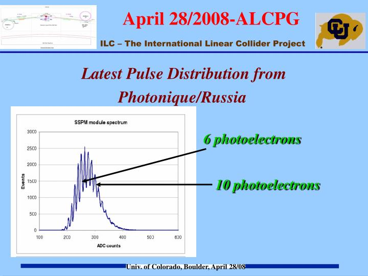 Latest Pulse Distribution from