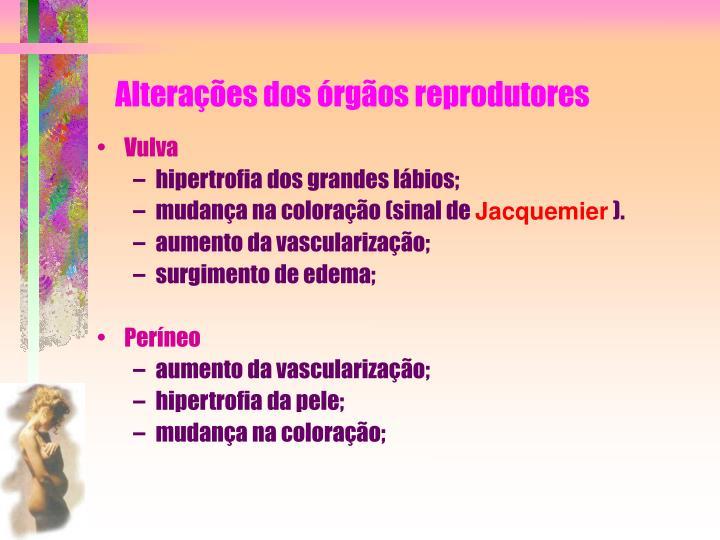 Alterações dos órgãos reprodutores